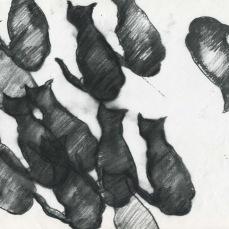 many mushies