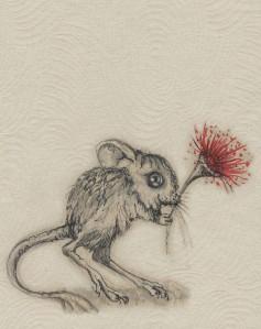 mousie flower
